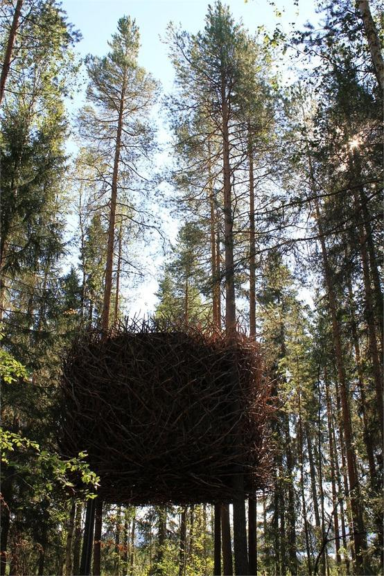 experiencia-chic-laponia-sueca-treehotel-L-sl5p25